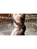 Трусы AUSSIEBUM Gladiator Bikini лот 719